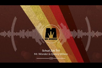 Mr. Wonder & Quincy Wilson - Schud Zak Tril (feat. Servinio & Skinto)